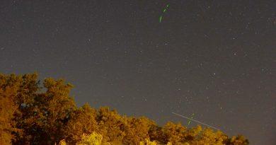 Foto de luciérnagas y el paso de la Estación Espacial Internacional