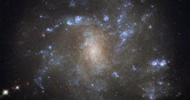 Una galaxia similar a la Vía Láctea en la constelación del Lince