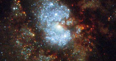 """El Hubble capta una imagen de IC 342, mejor conocida como """"la Galaxia Oculta"""""""