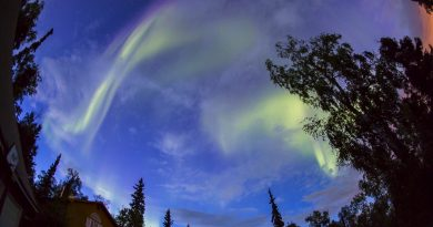 Auroras boreales desde Fairbanks, Alaska