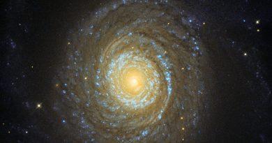 La corona galáctica de la galaxia espiral NGC 6753