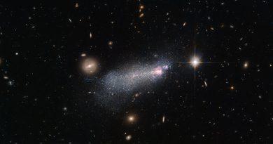 La efímera e intensa vida de una estrella Wolf-Rayet
