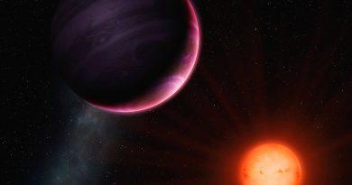 Descubren un exoplaneta gigante orbitando una estrella enana M