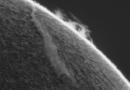 Fotografía de una prominencia solar captada el 29 de noviembre