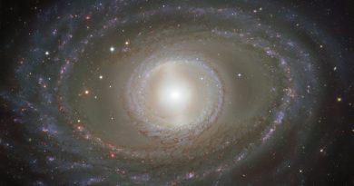 Los lazos de gas que rodean a la galaxia espiral NGC 1398