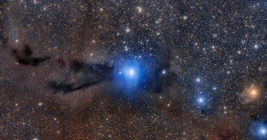 Una región formadora de estrellas emerge de la oscuridad