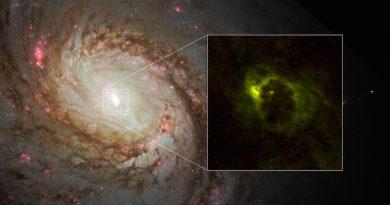 Astrónomos observan un anillo de polvo y gas alrededor de un agujero negro supermasivo