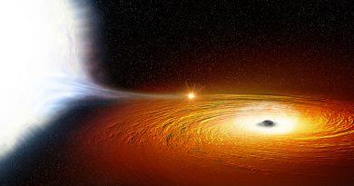 Agujeros negros supermasivos que devoran una estrella por año