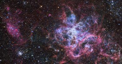 Detectan un exceso de estrellas masivas en la Nebulosa de la Tarántula