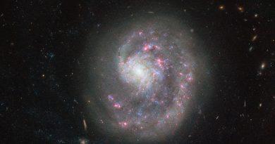 Astrónomos observan una galaxia que ha sido desmembrada