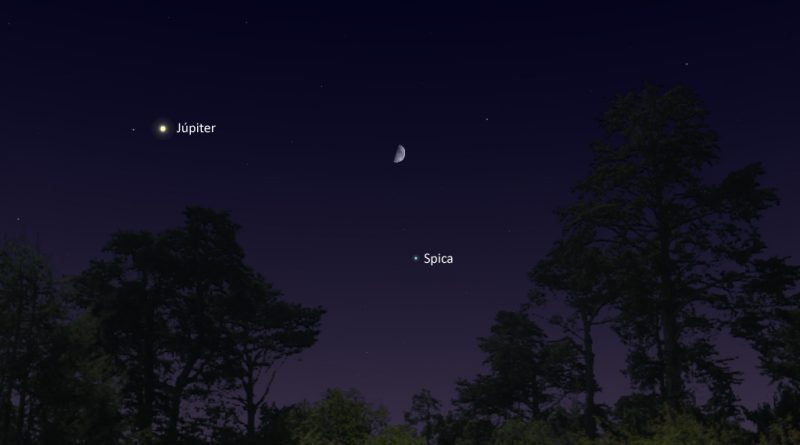 Esta noche se podrá ver la conjunción de la Luna y la estrella Spica