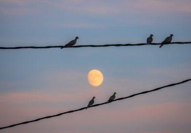 La Luna fotografiada desde Rubielos de Mora, Teruel (España)