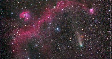Imagen del Cometa 21P/Giacobini-Zinner y la Nebulosa IC2177