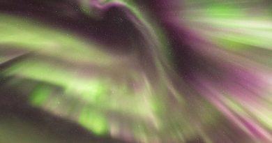Foto de una corona de auroras boreales tomada desde Senja, Noruega
