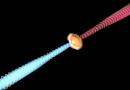 Detectan campos magnéticos en los chorros de una estrella bebé