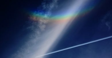 Arco circuncenital captado en Lovaina, Bélgica