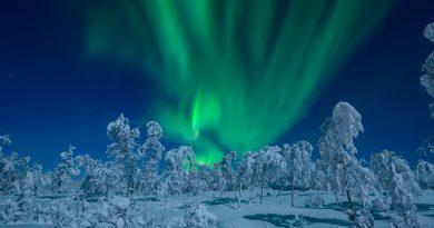 Auroras boreales fotografiadas desde Senja, Noruega