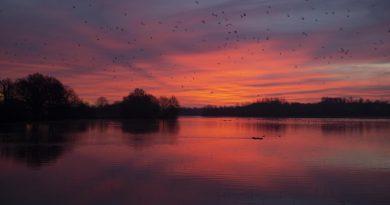 El amanecer fotografiado desde Norfolk, Inglaterra