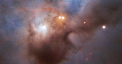NGC 1788: un murciélago cósmico en pleno vuelo