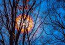 Imagen de una corona solar captada desde Ohio, Estados Unidos