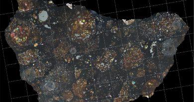 Descubren el fragmento de un cometa en el interior de un meteorito