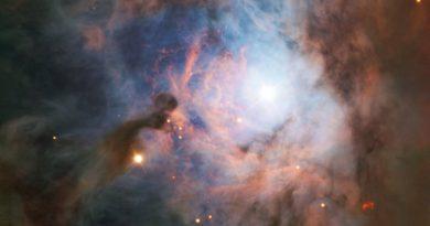 Las maravillas astronómicas de la constelación de Orión