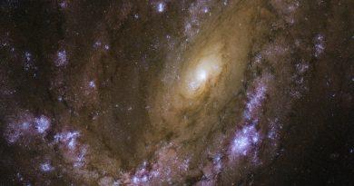 NGC 4051: una galaxia explosiva en la constelación de la Osa Mayor