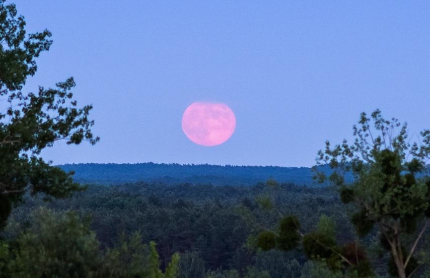 La salida de la Luna captada desde Kołaczkowo, Polonia