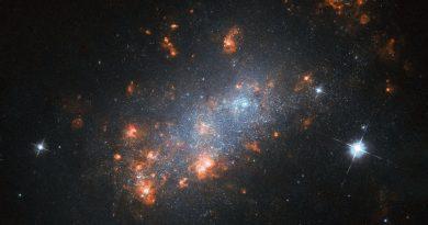 Las gigantescas guarderías estelares de la galaxia NGC 1156