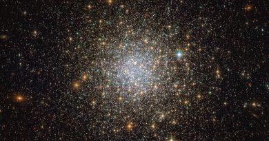 El Hubble observa a un grupo de estrellas antiguas en la constelación de Hydrus
