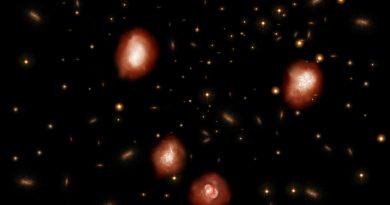 El Observatorio ALMA identifica los antepasados oscuros de las galaxias elípticas masivas