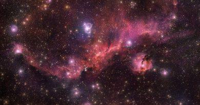 Las impresionantes alas de la Nebulosa de la Gaviota