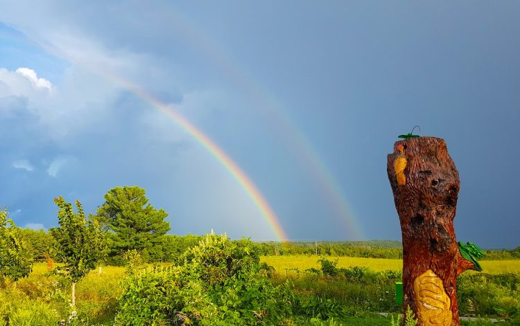 Arcoíris doble fotografiado desde Cedar Valley, Canadá