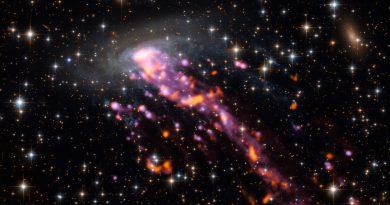 El Observatorio ALMA obtiene imágenes de una medusa cósmica