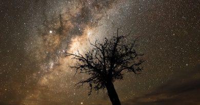 La Vía Láctea fotografiada desde Sutherland, Sudáfrica