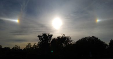 Foto del Sol y dos parhelios tomada desde California, Estados Unidos