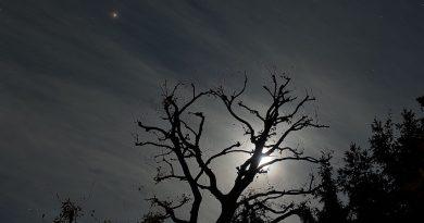 Marte y la Luna captados desde Surrey, Inglaterra