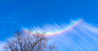 Imagen de un arco circuncenital captado desde Rohr, Alemania