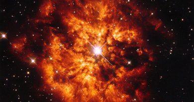 La intensa y efímera vida de una estrella Wolf-Rayet