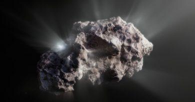 El cometa interestelar 2I/Borisov es uno de los cometas más prístinos jamás observados