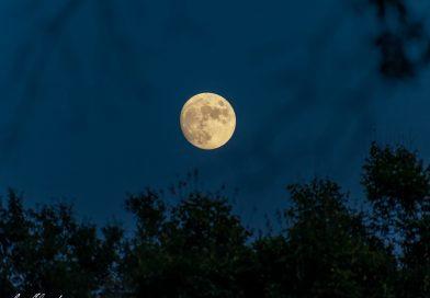 Foto de la Luna tomada desde Texas, Estados Unidos